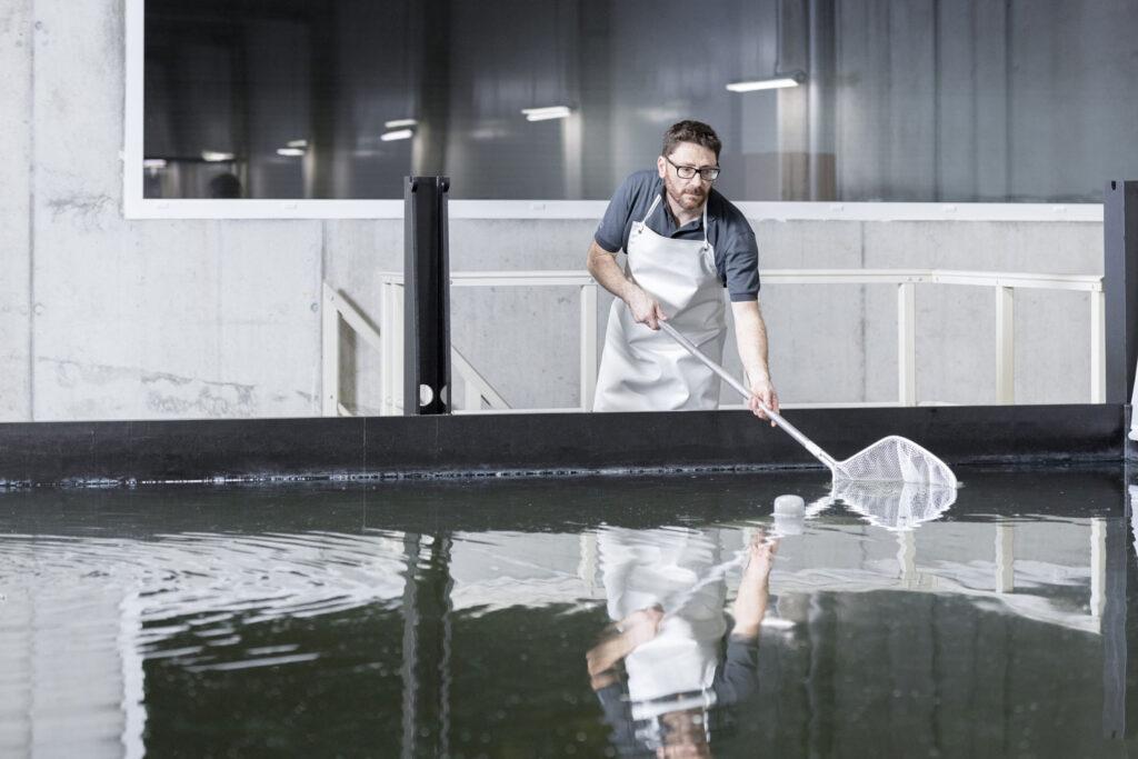niezwodna i efektywna technologia zapewniajaca optymalne warunki hodowli stacje swiezej wody uzytkowej firmy taconova w najwiekszej europejskiej farmie krewetek6 1024x683 - Niezawodna i efektywna technologia, zapewniająca optymalne warunki hodowli - stacje świeżej wody użytkowej firmy Taconova w największej europejskiej farmie krewetek