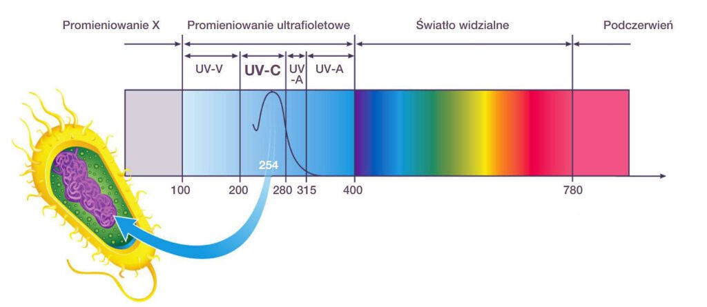 zastosowanie produktow uv c firmy ledvance w dezynfekcji powietrza powierzchni oraz wody1 1024x445 - Zastosowanie produktów UV-C firmy LEDVANCE w dezynfekcji powietrza, powierzchni oraz wody